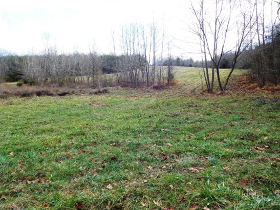 Lots/Land/Farm, Farmland, Timber, Horse Farm, Beef Cattle - Nathalie, VA (photo 5)