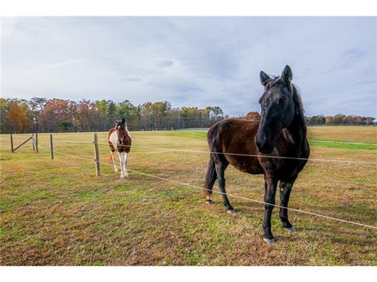 2-Story, Colonial, Custom, Single Family - Powhatan, VA (photo 4)