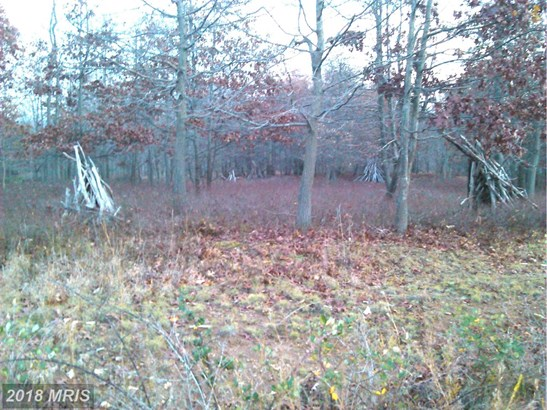 Lot-Land - HEDGESVILLE, WV (photo 2)