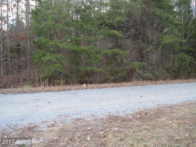 Lot-Land - BEAVERDAM, VA (photo 1)