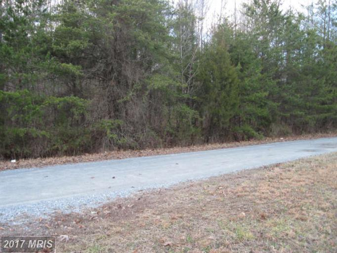 Lot-Land - BEAVERDAM, VA (photo 2)