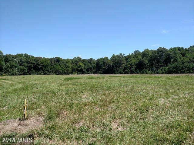 Lot-Land - TRAPPE, MD (photo 2)