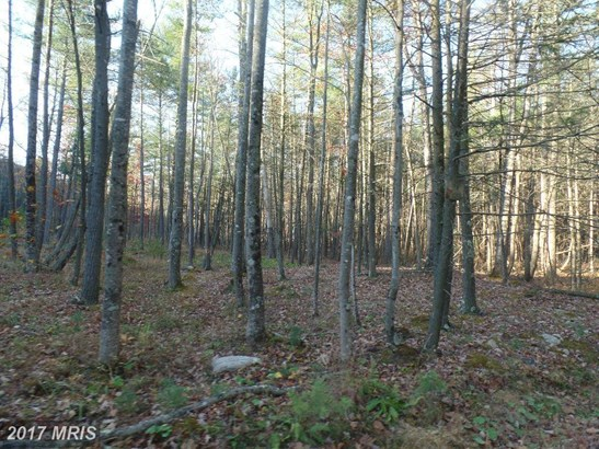 Lot-Land - BERKELEY SPRINGS, WV (photo 2)