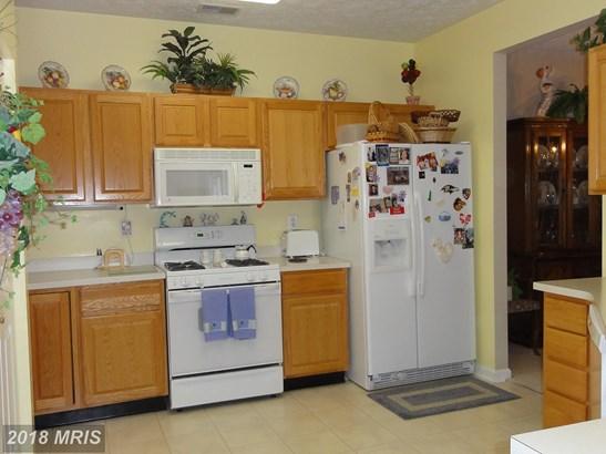Garden 1-4 Floors, Contemporary - BALTIMORE, MD (photo 4)