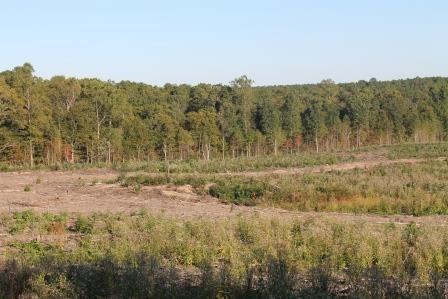 Land/Lots - Kenbridge, VA (photo 3)