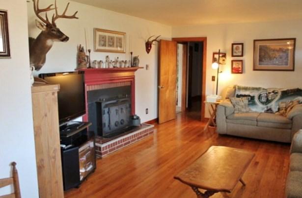 Ranch, Single Family - Virgilina, VA (photo 2)