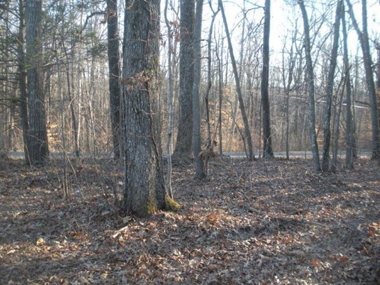 Land (Acreage), Lots/Land/Farm - Union Hall, VA (photo 5)