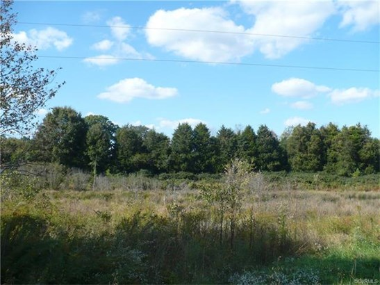 Lots/Land - Beaverdam, VA (photo 5)