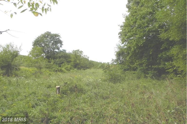 Lot-Land - BOYDS, MD (photo 2)