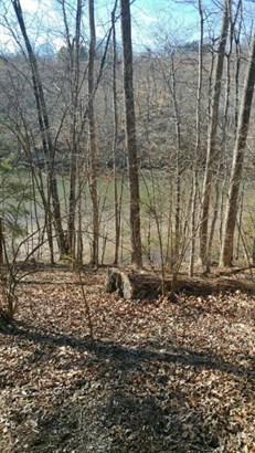 Land (Acreage), Lots/Land/Farm - Goodview, VA (photo 2)