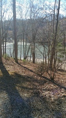 Land (Acreage), Lots/Land/Farm - Goodview, VA (photo 3)