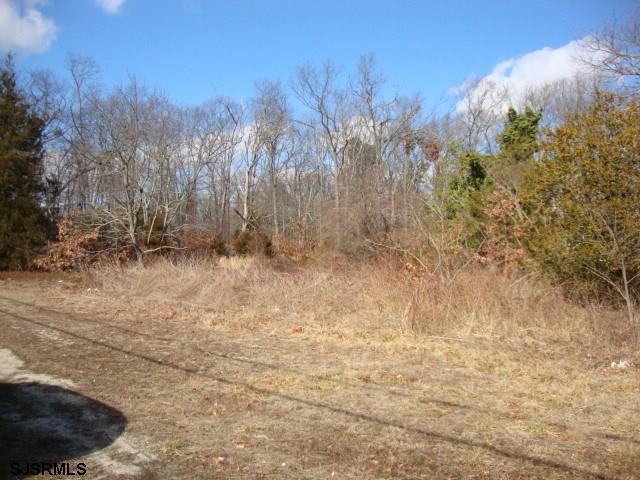 Land - Egg Harbor Township, NJ (photo 2)