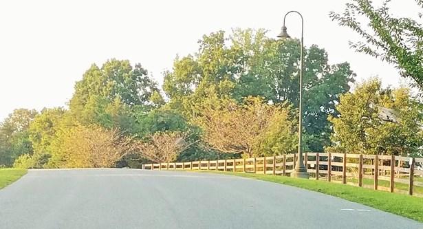 Lot, Lots/Land/Farm - Union Hall, VA (photo 5)
