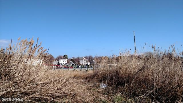 Lot-Land - TILGHMAN, MD (photo 2)
