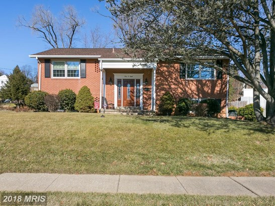 Raised Rancher, Detached - BALTIMORE, MD (photo 1)