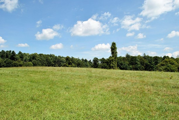 Land (Acreage), Lots/Land/Farm - Copper Hill, VA (photo 4)