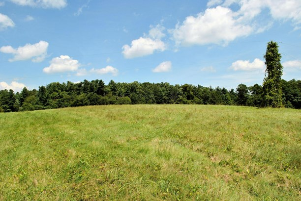 Land (Acreage), Lots/Land/Farm - Copper Hill, VA (photo 5)