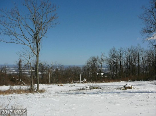 Lot-Land - BLUEMONT, VA (photo 2)