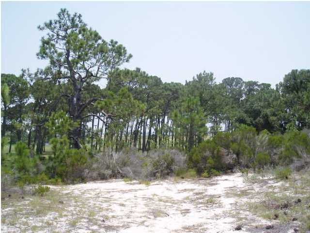 Lot - DAUPHIN ISLAND, AL (photo 3)