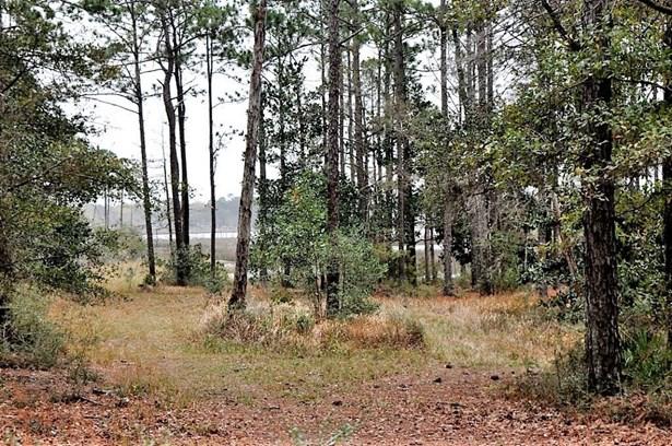 Land - THEODORE, AL (photo 1)