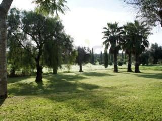 Alvito, Beja - PRT (photo 5)