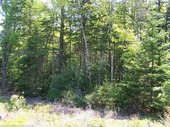 Cross Property - Gouldsboro, ME (photo 3)