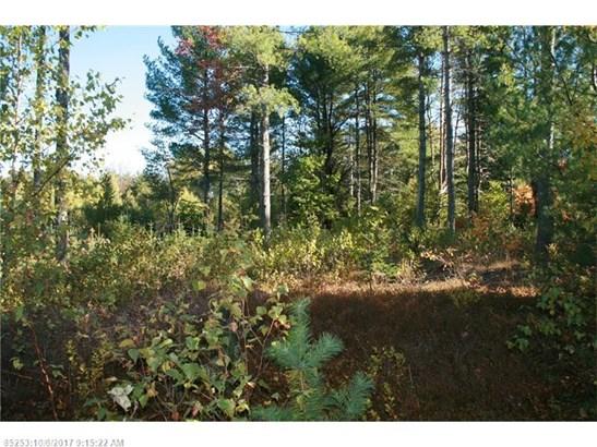 Cross Property - Greenbush, ME (photo 4)