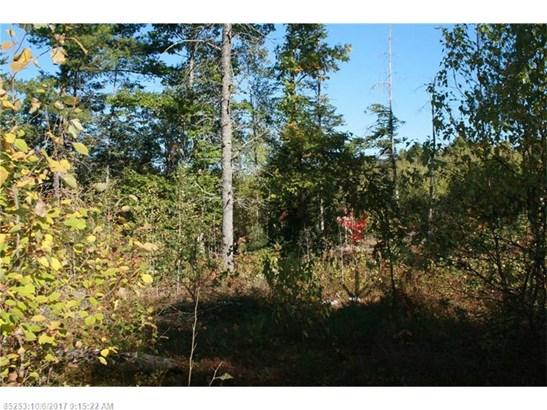 Cross Property - Greenbush, ME (photo 5)