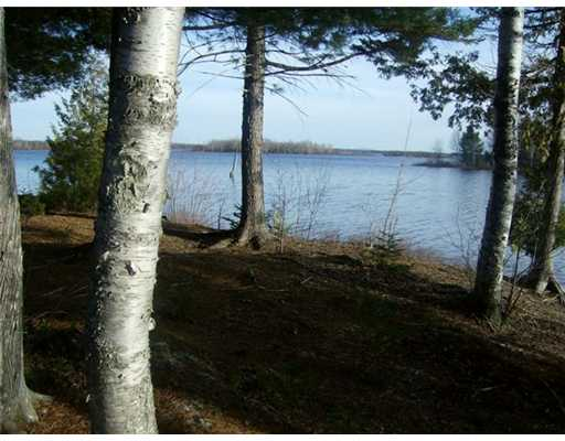 Cross Property - Mariaville, ME (photo 5)