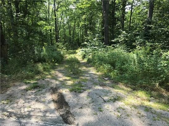 Cross Property - Gouldsboro, ME (photo 4)