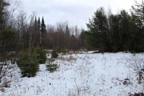 Cross Property - Anson, ME (photo 1)