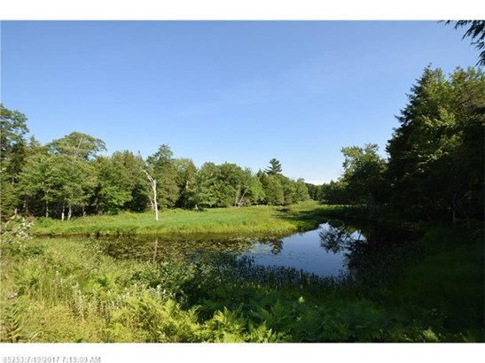 Cross Property - Howland, ME (photo 4)