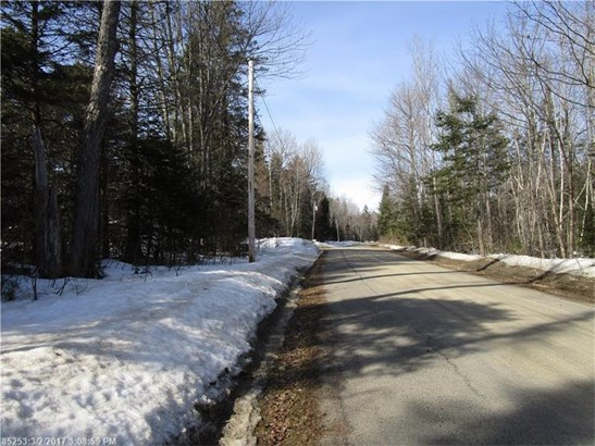 Cross Property - Greenfield Twp, ME (photo 4)