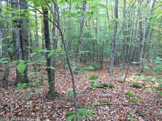 Cross Property - Prospect, ME (photo 1)