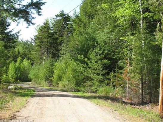 Cross Property - Lakeville, ME (photo 5)