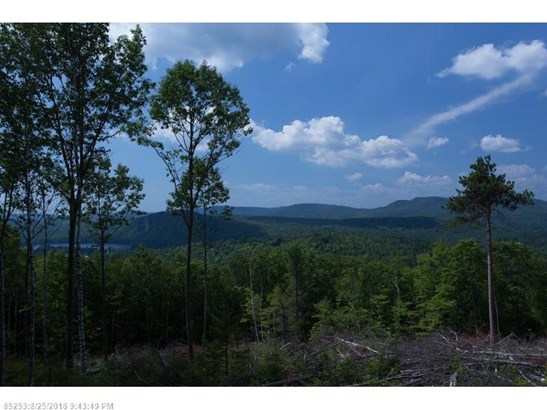 Cross Property - Woodstock, ME (photo 5)