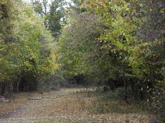Cross Property - Sumner, ME (photo 1)