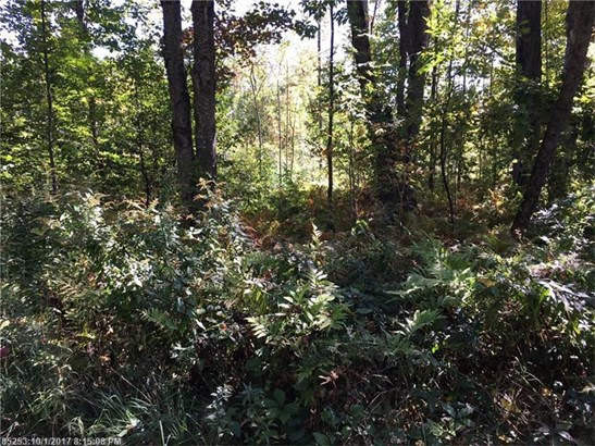Cross Property - Waterboro, ME (photo 5)