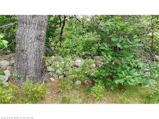 Cross Property - Newfield, ME (photo 1)