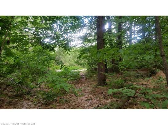 Cross Property - Livermore, ME (photo 5)