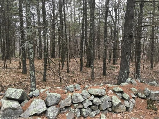 Cross Property - Waterboro, ME (photo 3)