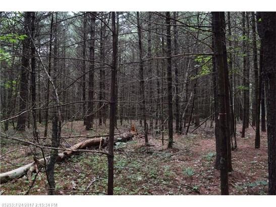 Cross Property - Lyman, ME (photo 2)