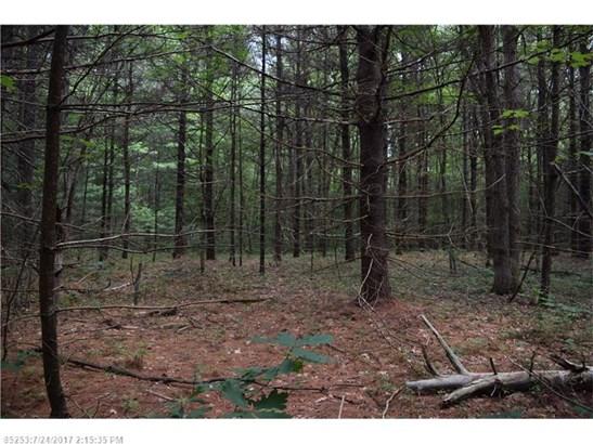 Cross Property - Lyman, ME (photo 3)