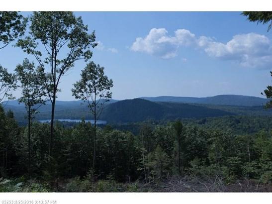 Cross Property - Woodstock, ME (photo 4)