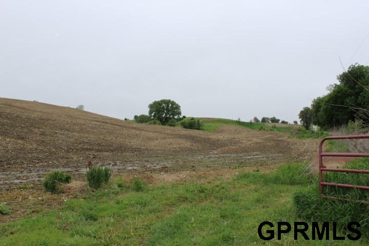 Farms/Ranches - Honey Creek, IA (photo 3)