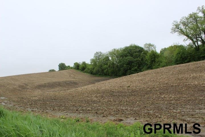Farms/Ranches - Honey Creek, IA (photo 5)