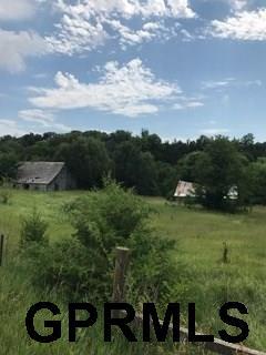 Farms/Ranches - Magnolia, IA (photo 5)