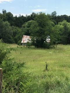 Farm - MAGNOLIA, IA (photo 3)