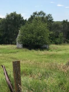 Farm - MAGNOLIA, IA (photo 4)