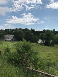 Farm - MAGNOLIA, IA (photo 5)